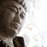 Đức Phật A Di Đà ở cõi Tây Phương Cực Lạc