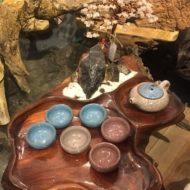 Cây tài lộc đá để phòng khách có những tác dụng gì?