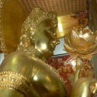 Biểu tượng của Phổ Hiền Bồ Tát