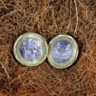 Đồng tiền may mắn ở Singapore